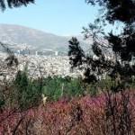 Sorkhe hesar national park - پارک سرخه حصار