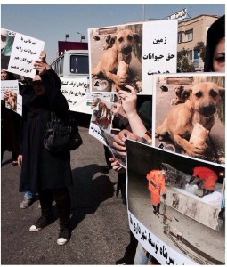 تظاهرات حمایت از حقوق حیوانات  در مشهد